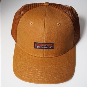 Patagonia Trucker Mesh Cap Brown